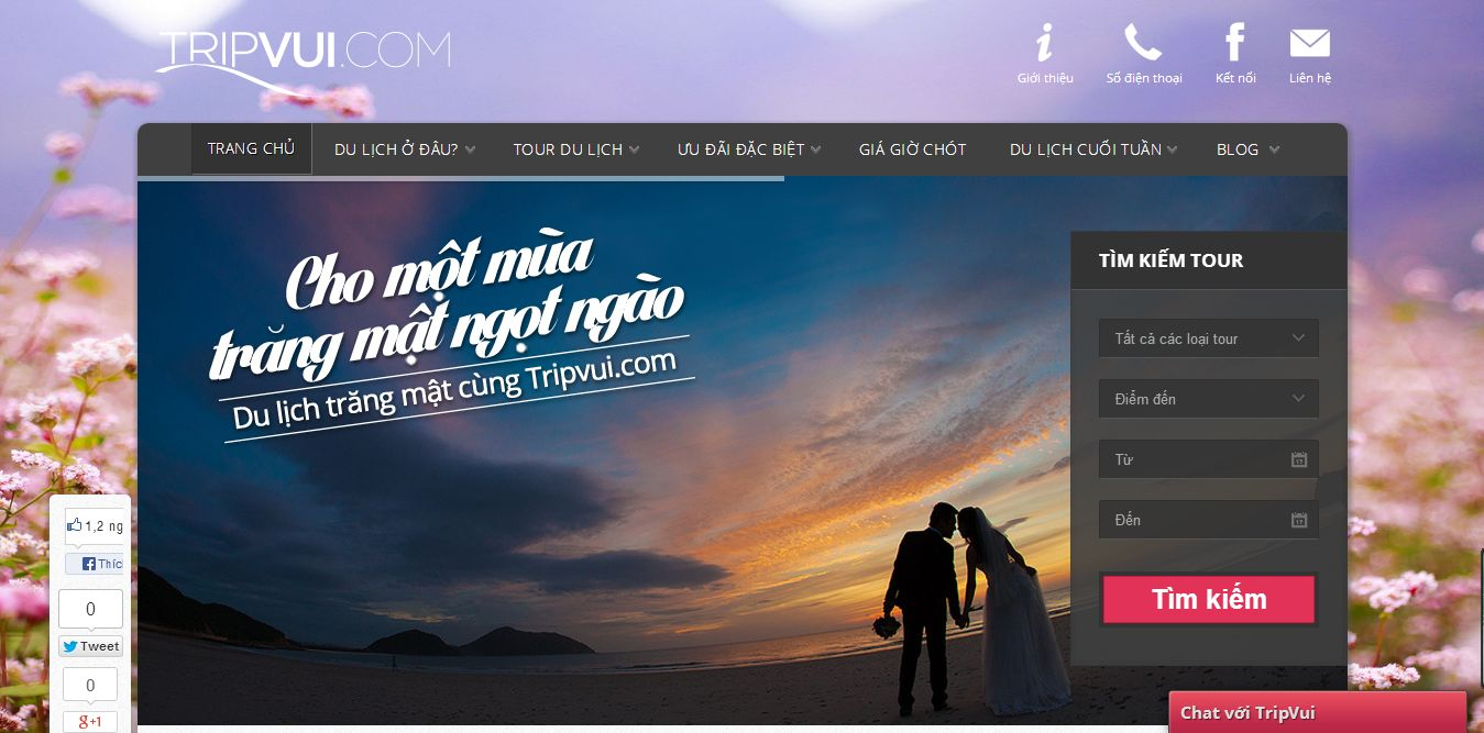 Tripvui.com: trang web đặt tour du lịch online do Sutunam phát triển trên WordPress