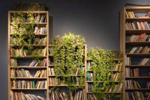 Ý tưởng về thư viện mở Sutunam